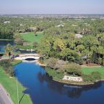Grey Oaks aerial
