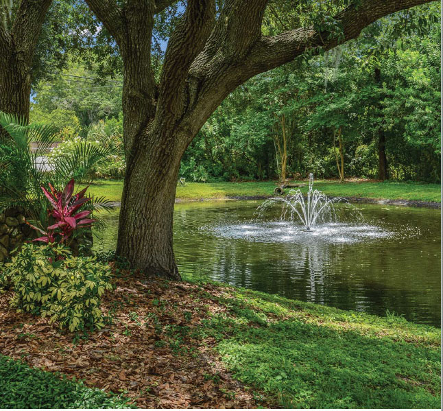 Lakes Of Palm Harbor Apartments